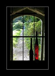 Through a Window Darkly