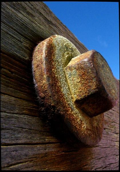 Grain of Salt by Fefe