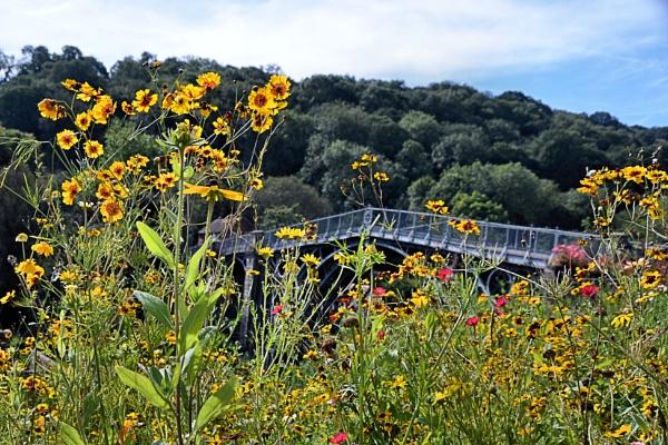 Ironbridge by MUMCAT