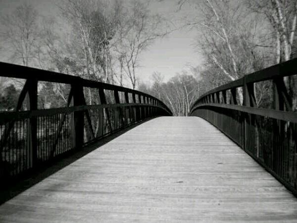 Park by texaslady_40