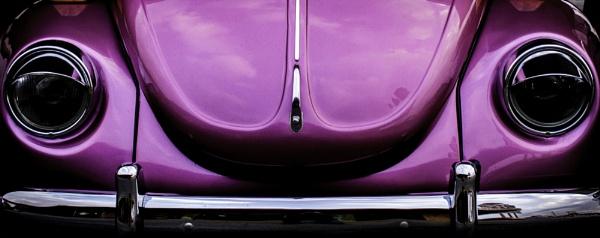 Purple bug by mike_malburg
