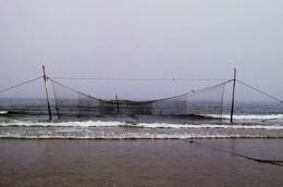 Lunan Bay Scotland.Fishing nets