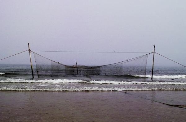 Lunan Bay Scotland.Fishing nets by jmcca