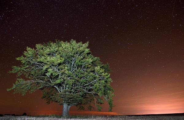 Night light pollution by RodStrachan