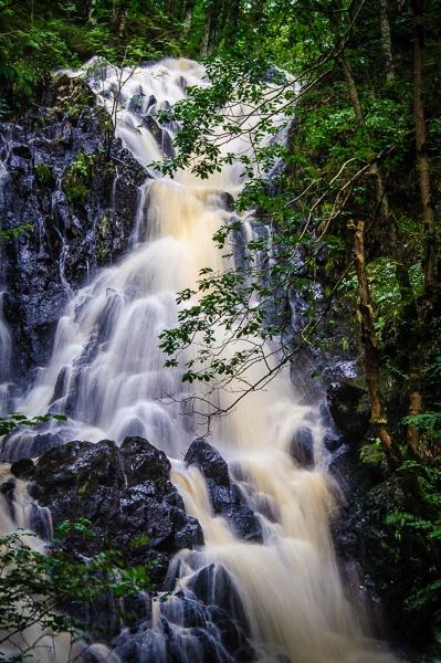Cree Wood Falls