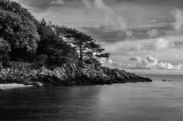 Galloway's Japanese coastline