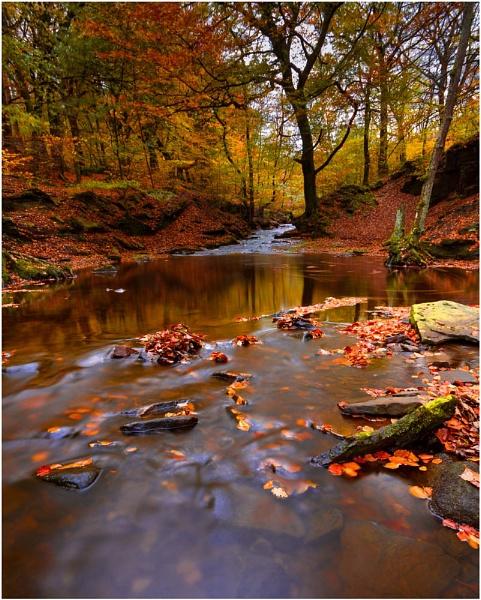 Autumn Satins by JanieB43
