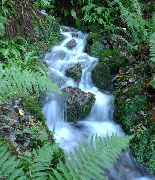 Exmoor waterfall by NippyN