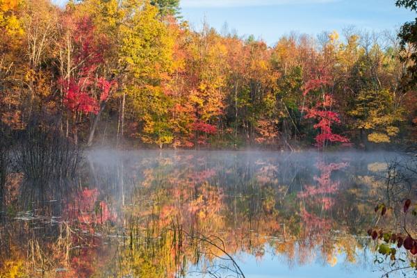 Misty Fall by Weirdfish695