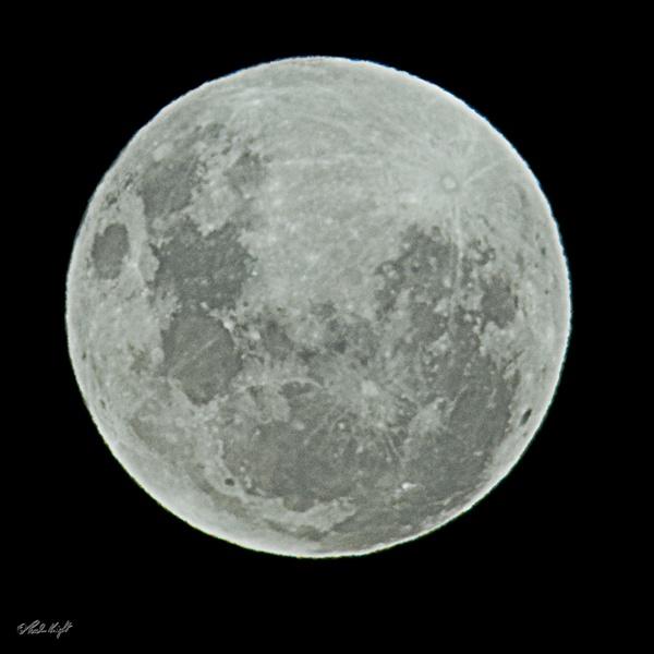 Full moon 0988 by paulknight