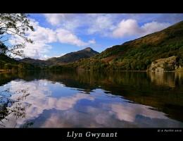 Llyn Gwynant 3