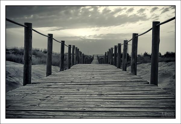 My Way by DiazSprite