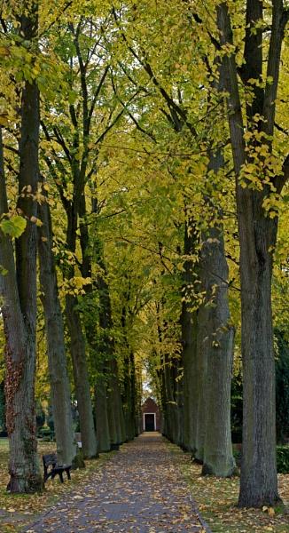 Graveyard Avenue, Ihlten by cisco4611