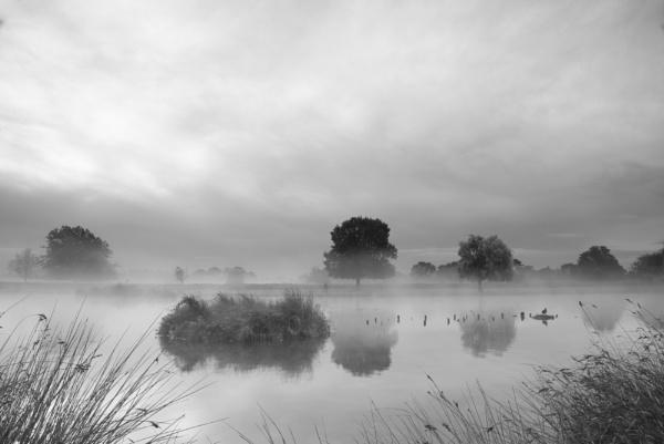 Soft Mist by Geekmeek