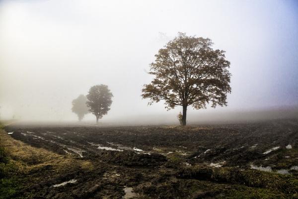 Season of Mists by backbeat