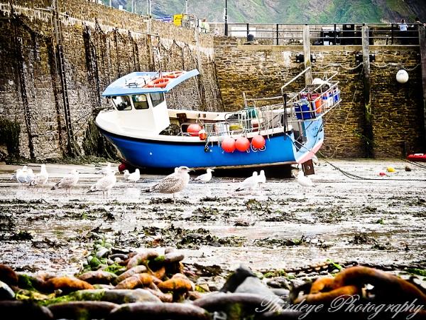 Between tides. by THIRDEYE