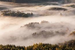 Trossachs Mist