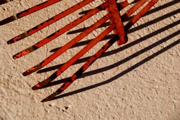 A rake take.... by Chinga