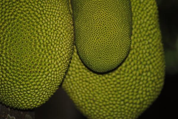 Fresh and fruity... by Chinga