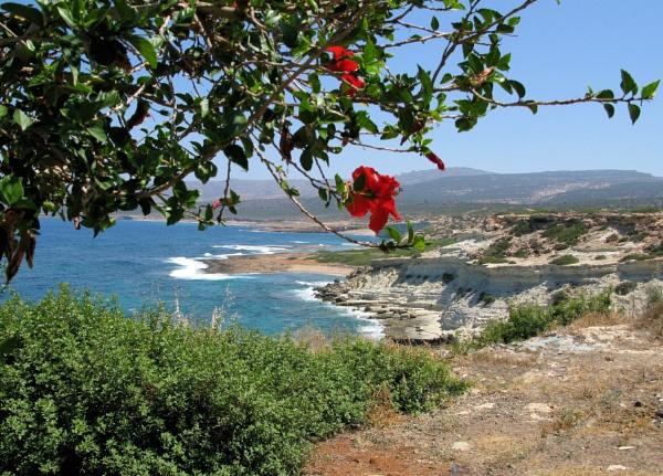 Towards Lara Bay (Cyprus) by Alanup