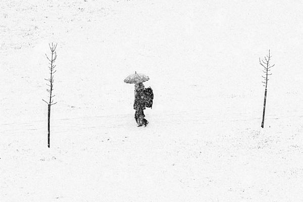 Umbrella by Bzox