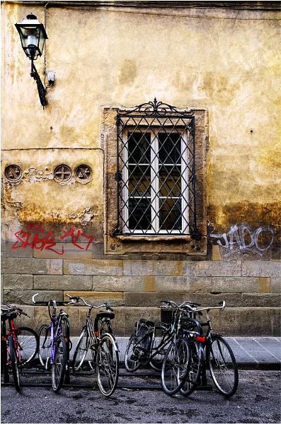 Firenze Biciclette