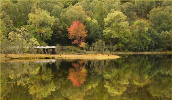 Loch Reflections by myrab