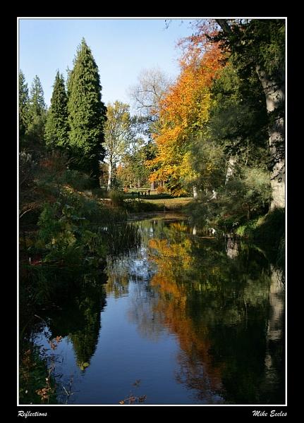 Reflections by oldgreyheron