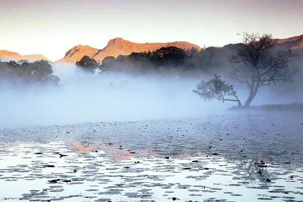 Dawn Mist on Loughrigg Tarn by bazhutton