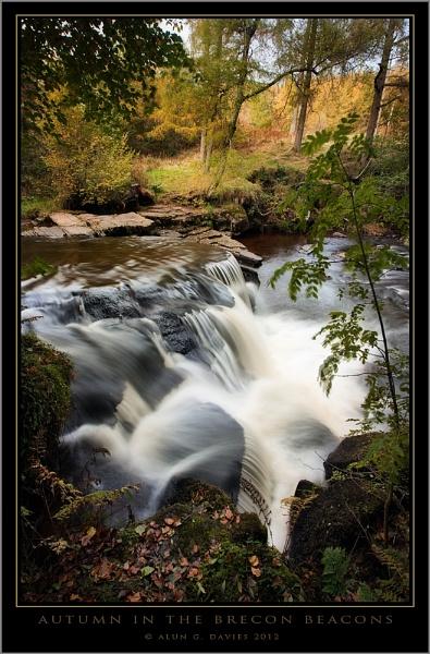 Peering in on Autumn by Tynnwrlluniau