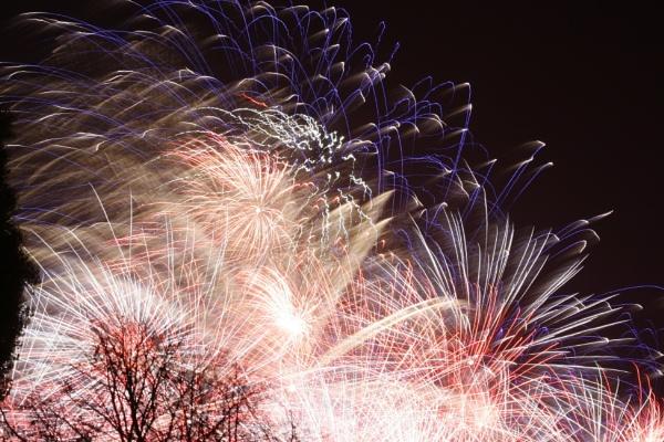 Firework by jimbob5643