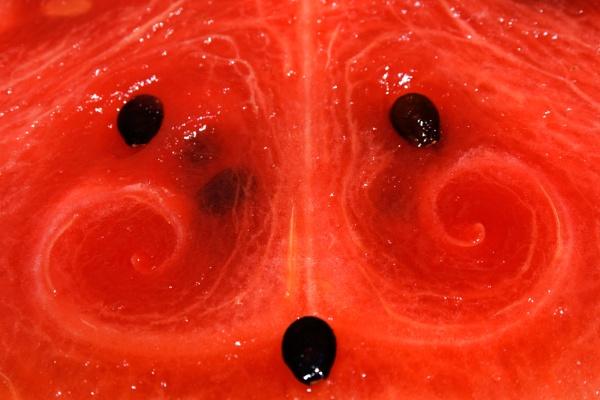 Melon Mustache