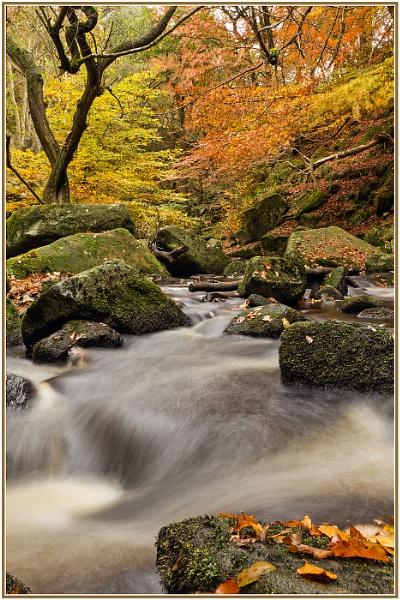 Padley Gorge - Peak District by Philpot