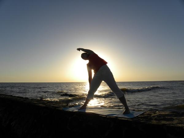 stretching towards the sun by Herrero