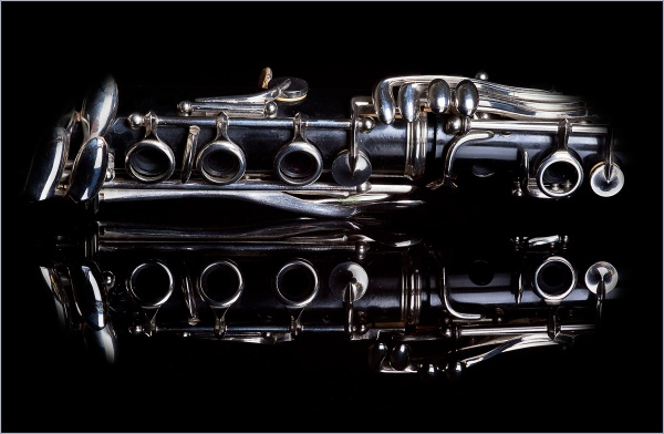Clarinet by MacroMeister