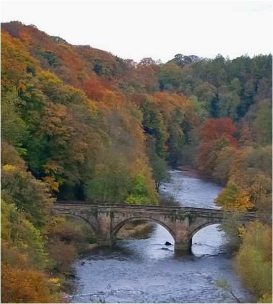 Rustic River