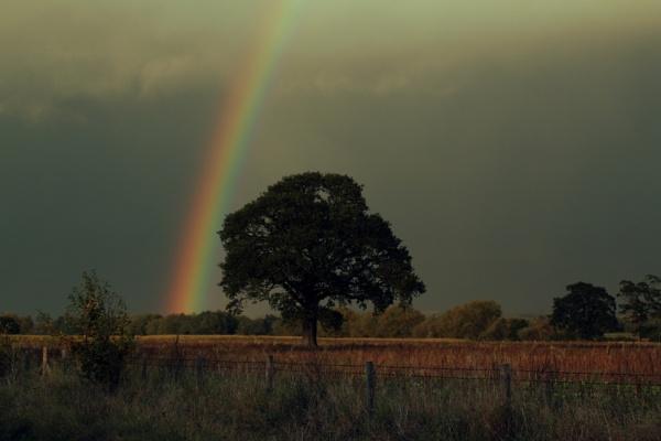 Rainbow by johnjones