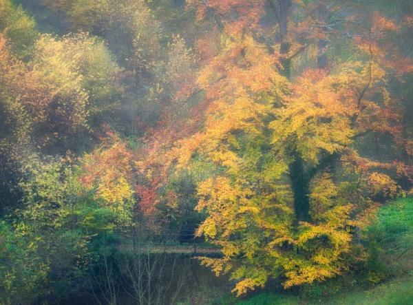 Autumn moments by mlseawell