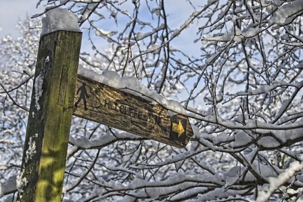 A winter walk by renoops