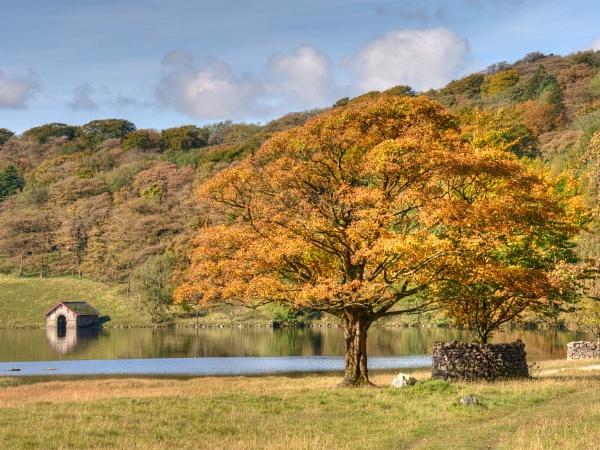Autumn @ Malham Tarn by Westroyd08