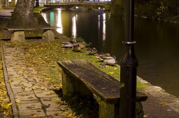 Siesta by the river by Giorgie0