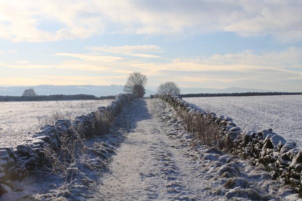 Winter by Emma94
