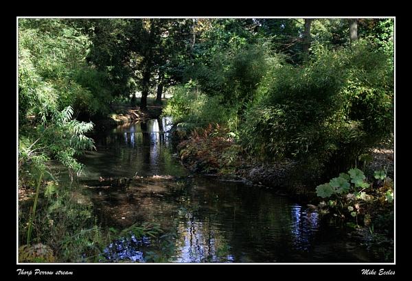 Thorp Perrow stream by oldgreyheron