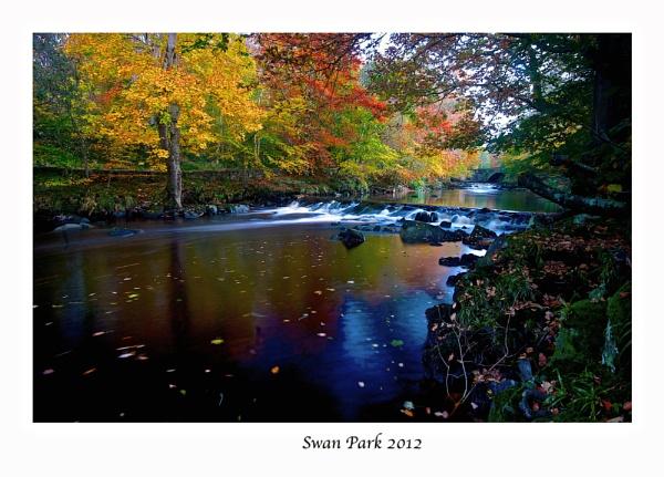 Swan Park in Autumn by Photogooru