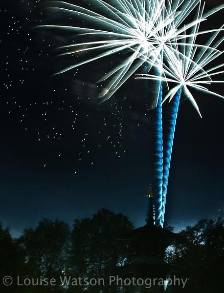 Firework by watsonle