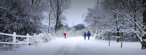 Winter stroll by TomSaetan