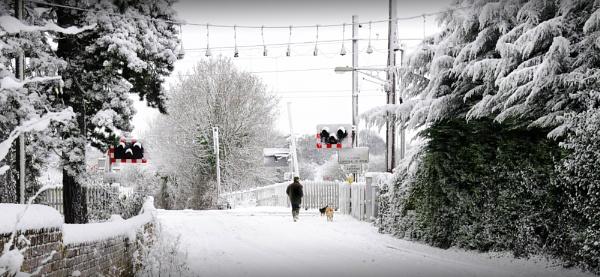 Winter walkies by TomSaetan