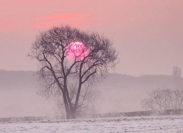 Winter  sunrise. by pantheonrider