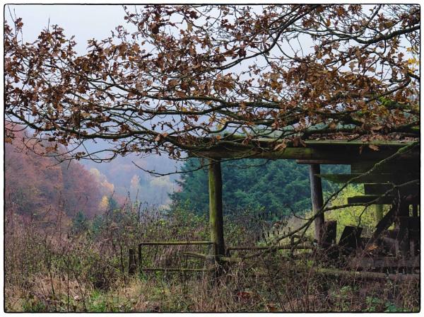 Autumn abandoned by mlseawell