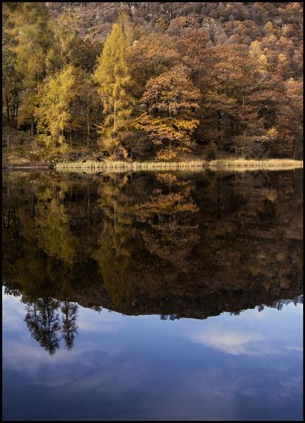 Autumn at Yew Tree Tarn. by Niknut